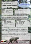 Fronwaldchallenge Flyer2021Überarbeitet.jpg